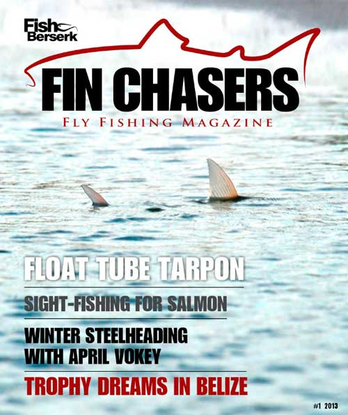 FinChasers13_1