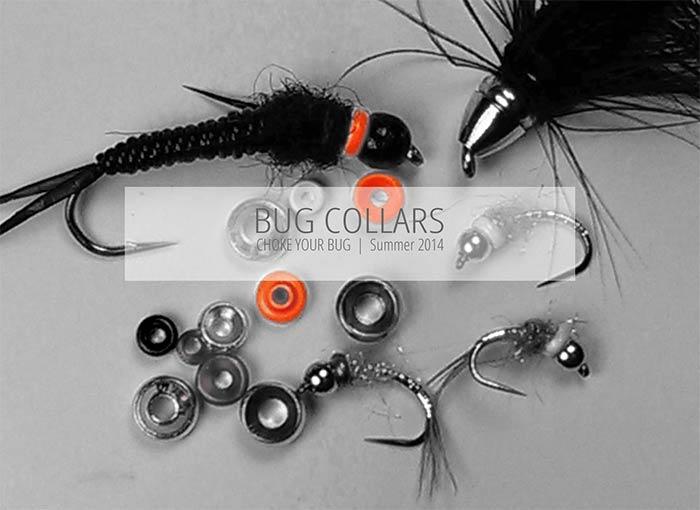 bug-collar-title-graphic