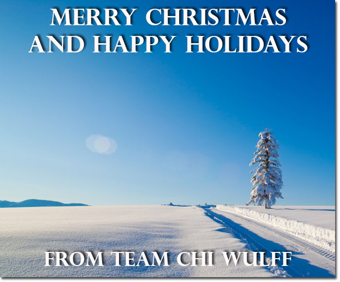 CW_ChristmasCard2014700Ds