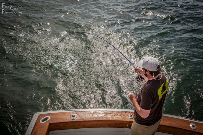Get up high. On a boat with a flying bridge, this means a bit of climbing is in order. Here, Pete Kutzer puts the hurt on a bluefish on Cape Cod.