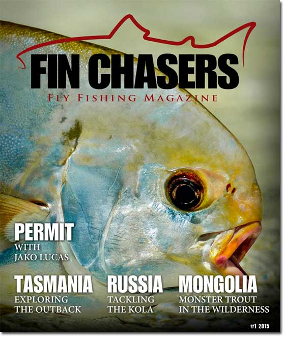 FinChasers2015_1_550DS