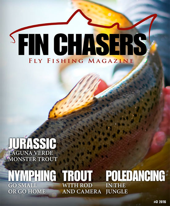 finchasers16-3